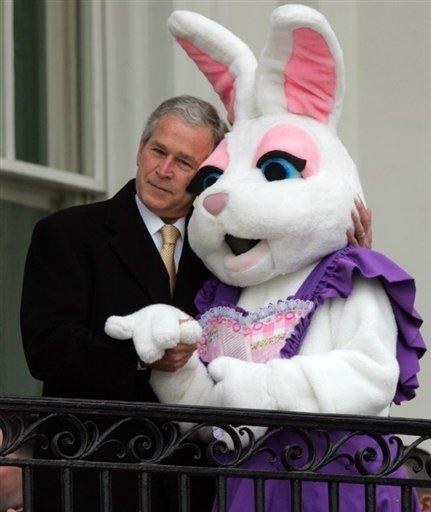 On dirait qu il est inoffenssif .. - bush and rabbit