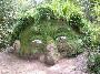 Un grosse tete en terre avec des plantes